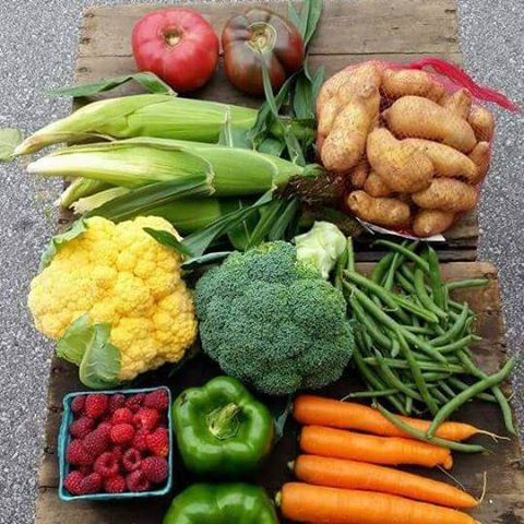 Moders Farm Box Green Bay Wisconsin CSA | upickfarmlocator.com