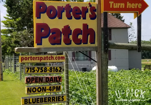 Porter's Patch Blueberries